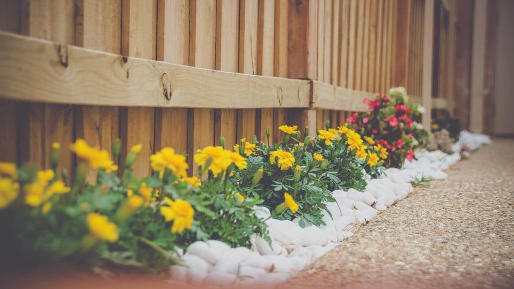 6 Landscaping Tips That Are Sure to Add Value to Your Home